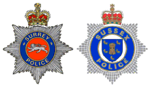 CSW police badges